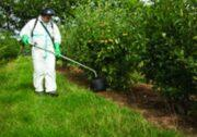 Специальный садовый опрыскиватель Micron Herbidome